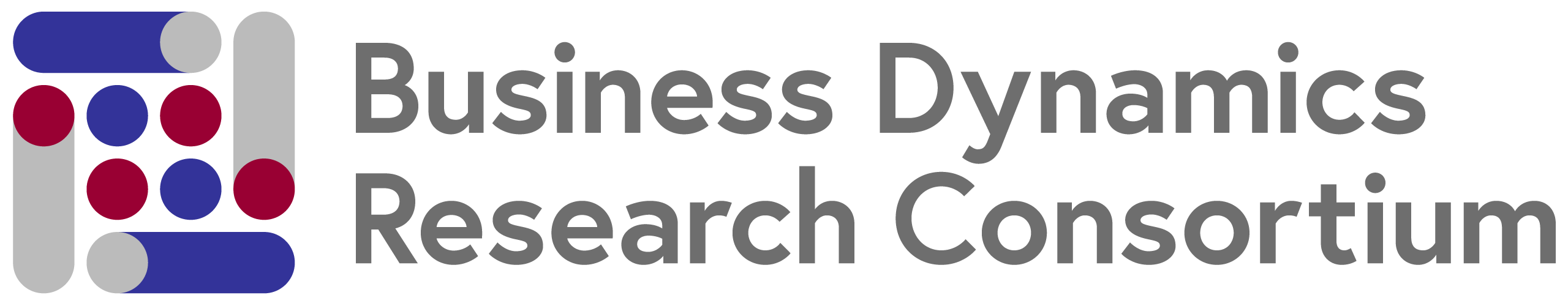 Business Dynamics Research Consortium